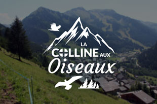 La Colline aux Oiseaux Chalet - rent chatel apartment, housing chatel, chatel rent apartment, rent chalet chatel private person